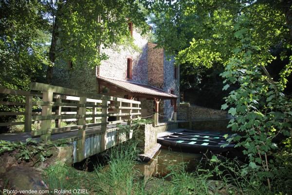 Maison de la Rivière Saint George de Montaigu