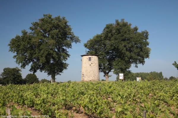 Le Moulin des Bois à Sainte Cécile